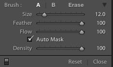 Auto Mask